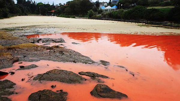 Влада обіцяє безпечний доступ до води вже до вечора вівторка (фото: news.com.au)
