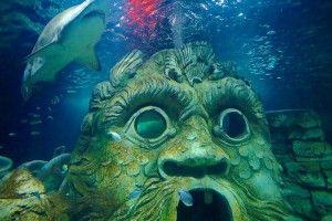 Шкідливі поради, або як вбити акваріумних рибок