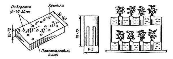 Схема авторастільні суниці