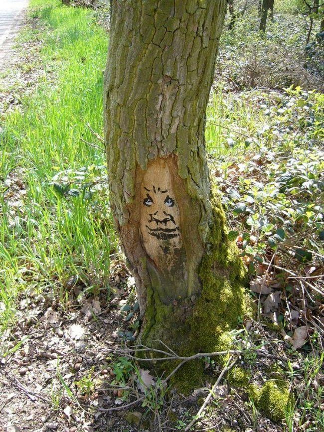 Кумедний Проект Дерева