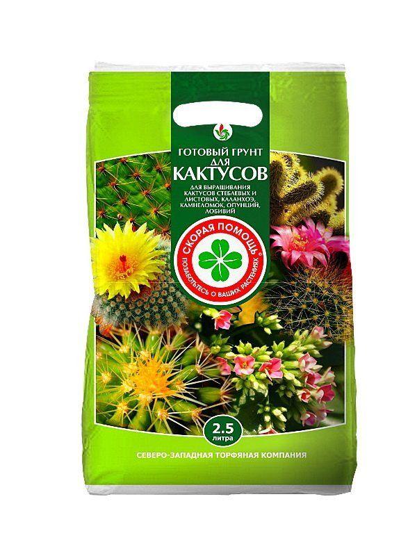 грунт для кактусів