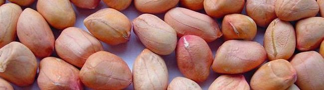 Знайомі горіхи арахіс - користь і шкода для нашого організму